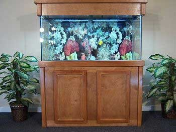 manufactured aquariums