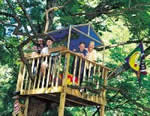 Open style tree house plans