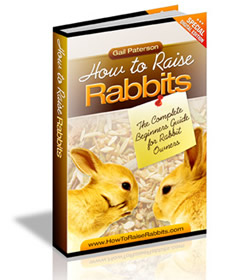 rabbit ebook