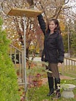 How To Make A Bird Feeder 10 Bird Feeder Woodworking Plans