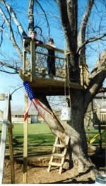 Basic tree house plans